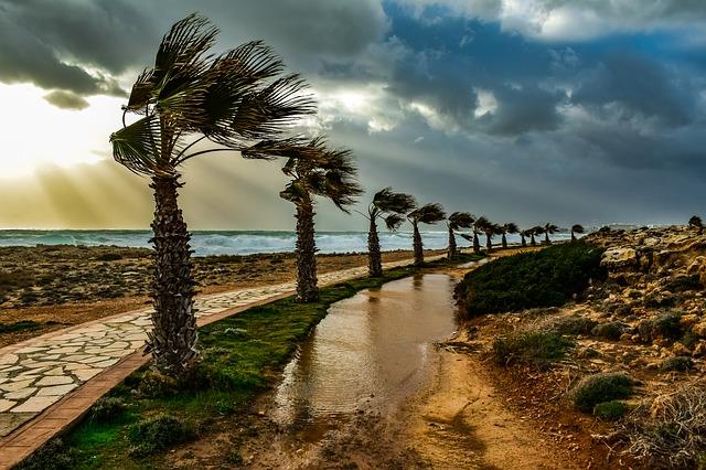 Tél Cipruson